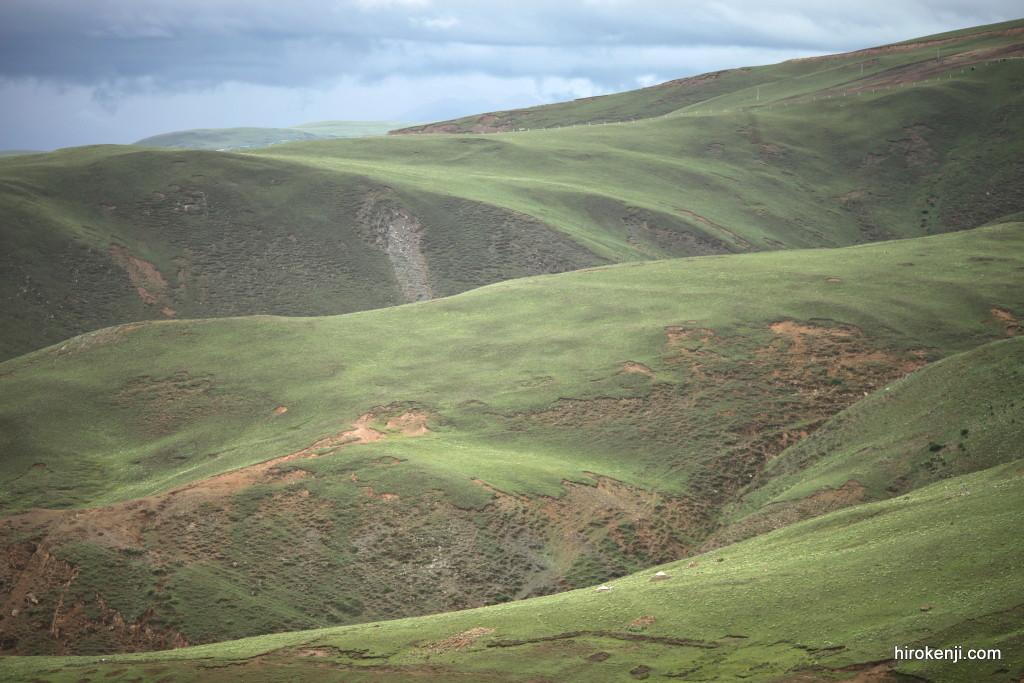 東チベット・理塘(リタン)の青々と続く小高い丘