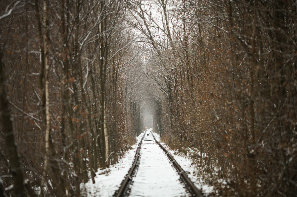 05愛のトンネル11