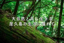 屋久島移住者の電気もガスも使わない生活に憧れて